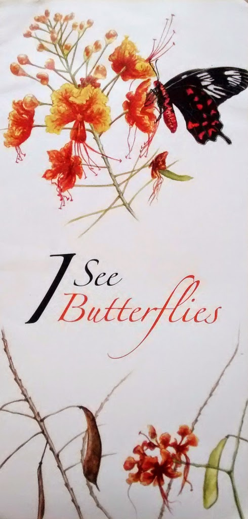 A SEASON OF BUTTERFLIES